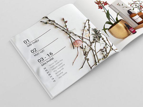 Thiết kế catalogue mỹ phẩm đẹp