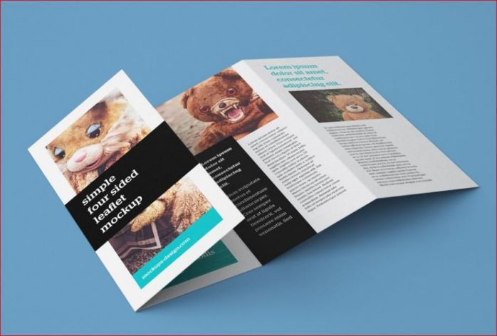 Vai trò của leaflet